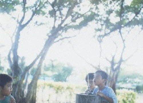 初恋の嵐: 初恋に捧ぐプラス